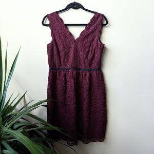 LOFT Scalloped Lace Double V Neck Mini Dress sz 6